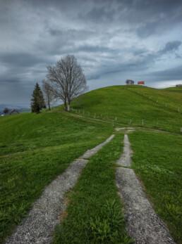 Appenzell, Appenzell Ausserrohden, Bauerhaus, Baum, Bäume, Clouds, Hundwil, Hügel, Schweiz, Suisse, Switzerland, Tree, Trees, Wald, Wiese, Wolken