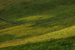 Appenzell, Bauernhof, Blumenwiese, Ortsbild, Ostschweiz, Schweiz, Suisse, Switzerland, Wiese