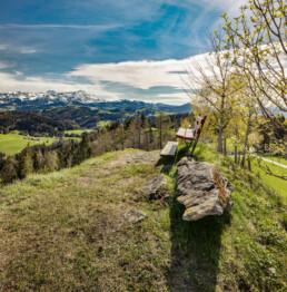 Appenzell, Appenzell Ausserrohden, Aussichtsbank, Bank, Berg, Bergmassiv, Bühler, Frühling, Hügel, Ostschweiz, Schweiz, Spring, Suisse, Switzerland, Säntis