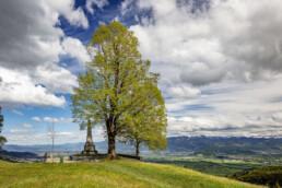 Appenzell, Appenzell Ausserrohden, Baum, Blumenwiese, Clouds, Frühling, Gais, Schweiz, Spring, Suisse, Switzerland, Vorarlberg, Wolken, Östereich