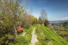 Appenzell, Appenzell Ausserrohden, Appenzeller Vorderland, Appenzellerhaus, Bauerhaus, Dorf, Frühling, Lutzenberg, Ortsbild, Ostschweiz, Spring, Weiler, Wolfhalden