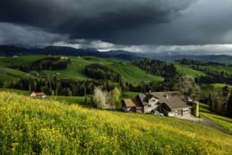 Alpen, Alps, Appenzell Ausserrohden, Appenzellerhaus, Bauerhaus, Bauernhof, Berge, Blumenwiese, Clouds, Frühling, Haus, Ortsbild, Schweiz, Schwellbrunn, Spring, Suisse, Switzerland, Wiese, Wolken