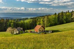 Abend, Appenzell, Appenzell Ausserrohden, Appenzellerhaus, Bodensee, Clouds, Deutschland, Frühling, Haus, Ostschweiz, Schweiz, See, Speicher, Spring, Streusiedlung, Suisse, Switzerland, Wolken, lake