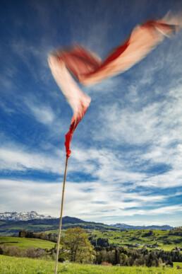 Appenzell Ausserrohden, Baum, Bergmassiv, Frühling, Gastgewerbe, Hotel, Hügel, Ostschweiz, Schweiz, Spring, Suisse, Switzerland, Teufen, Tourismus