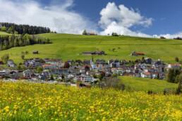 Appenzell, Appenzell Ausserrohden, Blumenwiese, Dorf, Frühling, Ostschweiz, Schweiz, Sonnenschein, Spring, Suisse, Switzerland, Waldstatt, Wiese