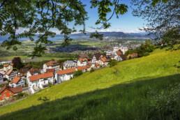 Appenzell, Appenzell Ausserrohden, Appenzeller Vorderland, Bodensee, Dorf, Frühling, Ostschweiz, Schweiz, Spring, Suisse, Switzerland, Walzenhausen