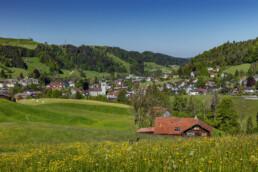 Appenzell, Appenzell Ausserrohden, Blumenwiese, Bühler, Ostschweiz, Schweiz, Sommer, Streusiedlung, Suisse, Switzerland, summer