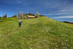 Appenzell Ausserrohden, Gais, Ostschweiz, Schweiz, Suisse, Switzerland, Verkehr, Wanderweg, Weg