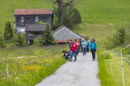 Sport, Stein, Wandern
