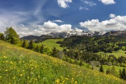 Alpen, Alpstein, Appenzell, Appenzell Ausserrohden, Berg, Bergmassiv, Frühling, Ostschweiz, Schweiz, Spring, Suisse, Switzerland, Säntis, Säntisbahn, Säntisbahn Säntis, Waldstatt