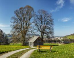 Appenzell, Appenzell Ausserrohden, Aussicht, Aussichtsbank, Bank, Baum, Bäume, Frühling, Schweiz, Sonnenschein, Spring, Stein, Suisse, Switzerland, Tree, Trees, Verkehr, Wald, Wanderweg, Weg, Wiese