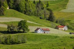 Appenzell, Appenzell Ausserrohden, Bühler, Frühling, Ostschweiz, Schweiz, Spring, Suisse, Switzerland