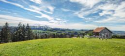 Appenzell, Appenzell Ausserrohden, Frühling, Ostschweiz, Rehetobel, Schweiz, Spring, Suisse, Switzerland