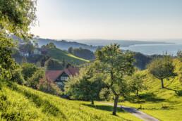 Appenzeller Land Tourismus AR, Appenzeller Vorderland, Bodensee, Heiden, Ostschweiz, Suisse, Switzerland, Tourismus, Verkehr, Walzenhausen, Wanderweg, Weg, Wolfhalden