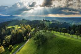 Abend, Appenzell, Appenzell Ausserrohden, Aussichtsbank, Bank, Baum, Bäume, Bühler, Clouds, Ostschweiz, Schweiz, Sommer, Suisse, Switzerland, Tourismus, Tree, Trees, Verkehr, Wald, Wanderweg, Weg, Wolken, summer
