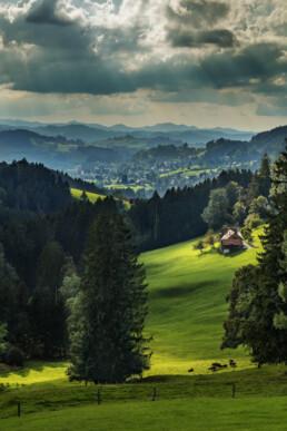 Appenzell, Appenzell Ausserrohden, Aussicht, Baum, Bäume, Clouds, Dorf, Ostschweiz, Schweiz, Suisse, Switzerland, Tree, Trees, Wald, Wolken