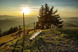 Appenzell, Appenzell Ausserrohden, Aussicht, Aussichtsbank, Bank, Baum, Bäume, Ostschweiz, Schweiz, Suisse, Switzerland, Tourismus, Tree, Trees, Urnaesch, Wald