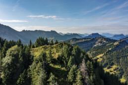 Appenzell, Appenzell Ausserrohden, Aussicht, Aussichtsbank, Bank, Berg, Berge, Bäume, Gipfel, Hügel, Ostschweiz, Schweiz, Suisse, Switzerland, Tourismus, Tree, Trees, Urnaesch, Wald